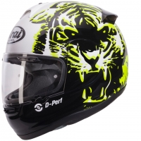 Casque ARAI AXCES-II ROAR GREEN 2016 Arai